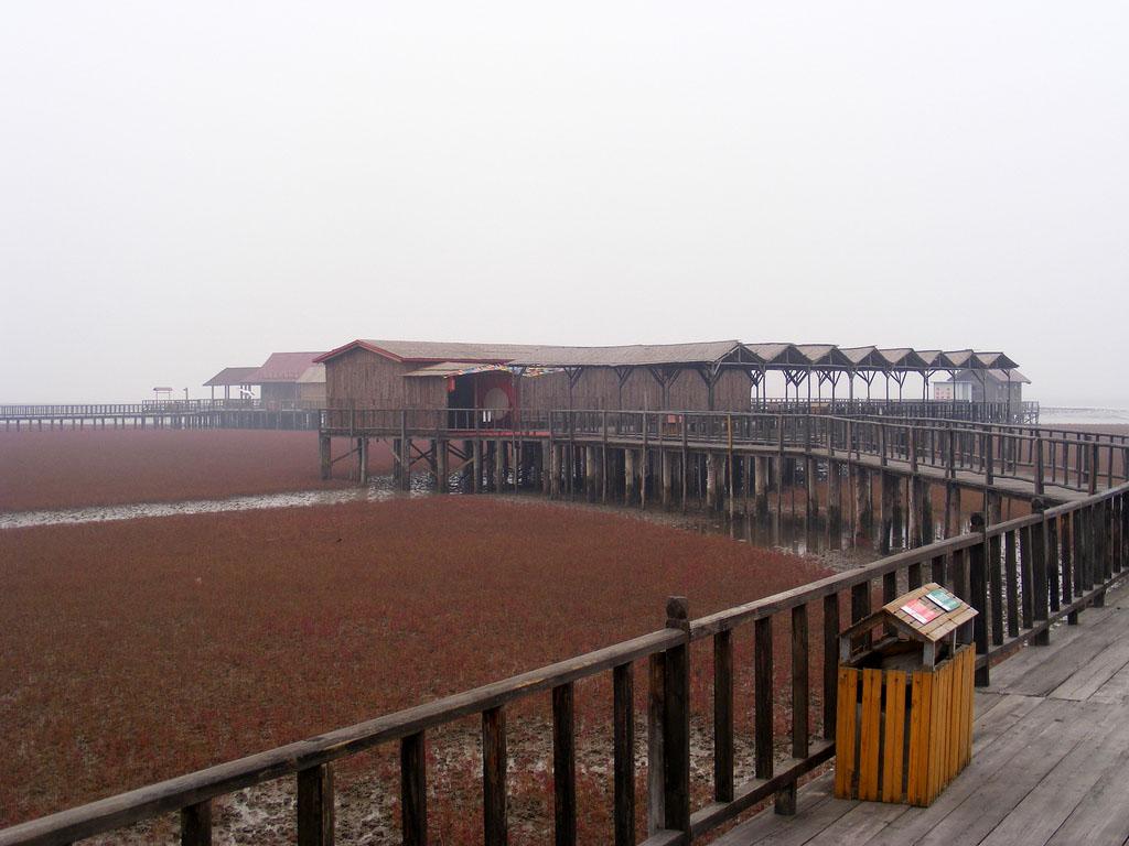 5201436186 90ce8cc066 b Красный пляж в Китае