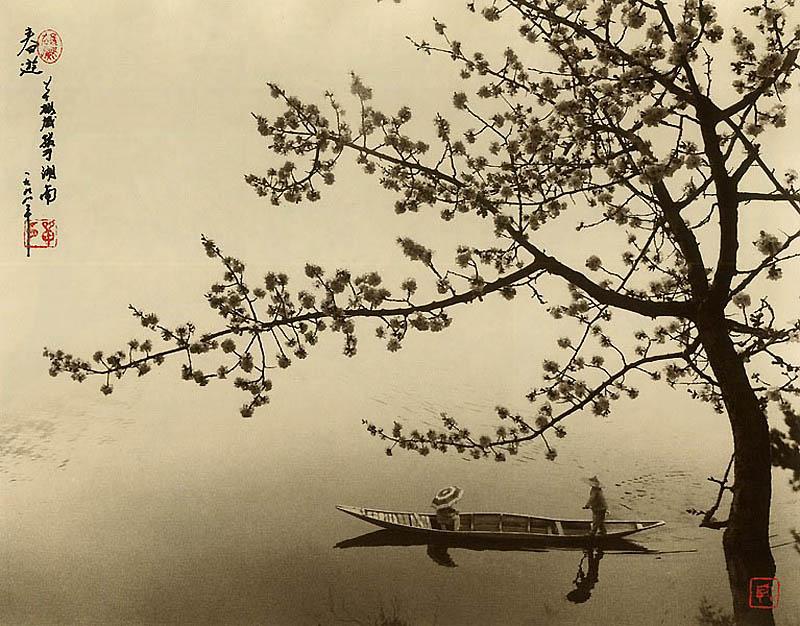 536 Фотографии в стиле традиционной китайской живописи