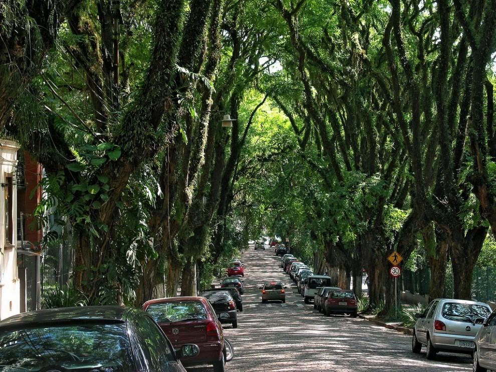 597 990x742 Зеленая улица в Бразилии