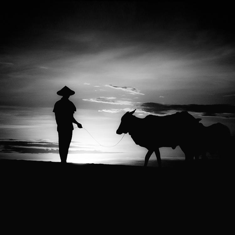 bandw04 Поэзия черно белой фотографии в работах Хенгки Коентжоро