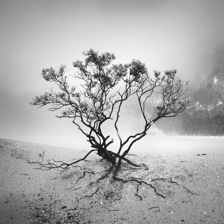 bandw11 Поэзия черно белой фотографии в работах Хенгки Коентжоро