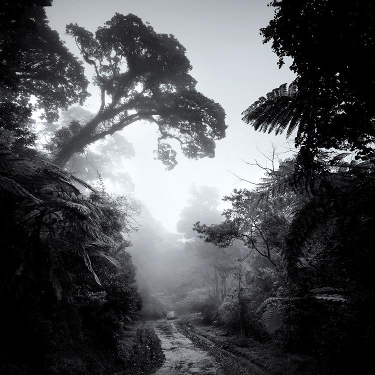 bandw16 Поэзия черно белой фотографии в работах Хенгки Коентжоро