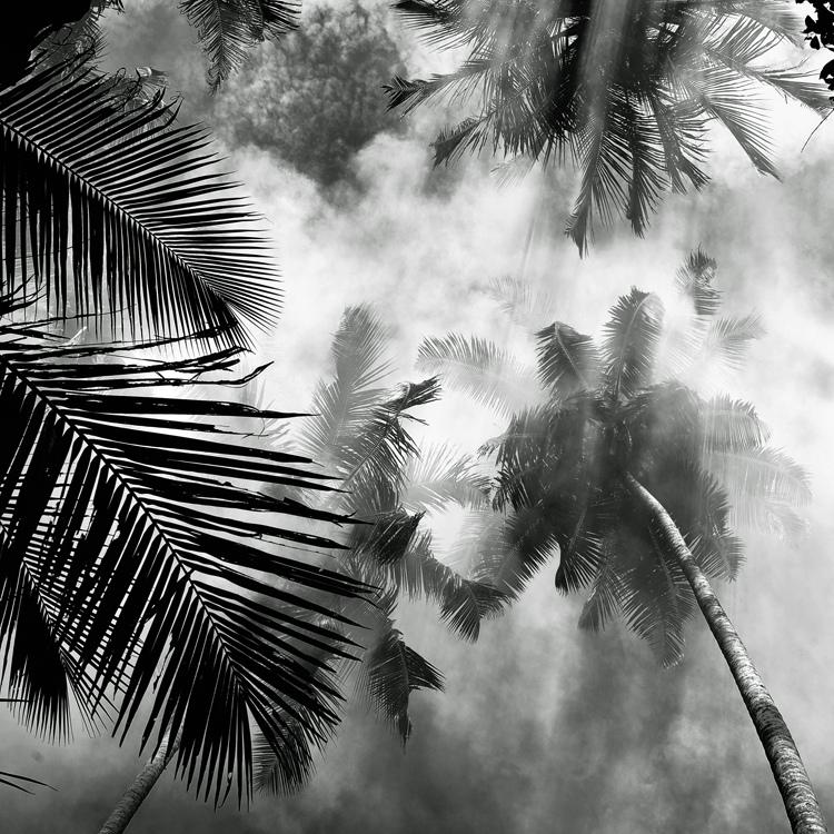 bandw19 Поэзия черно белой фотографии в работах Хенгки Коентжоро