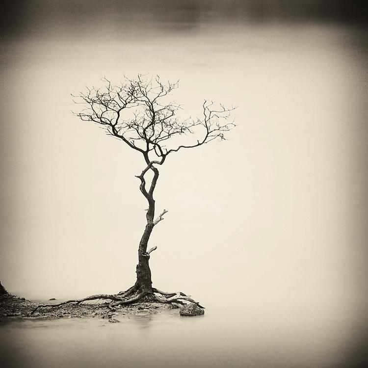 bandw30 Поэзия черно белой фотографии в работах Хенгки Коентжоро