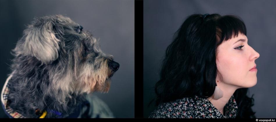 doggycat01 Собаки vs кошки