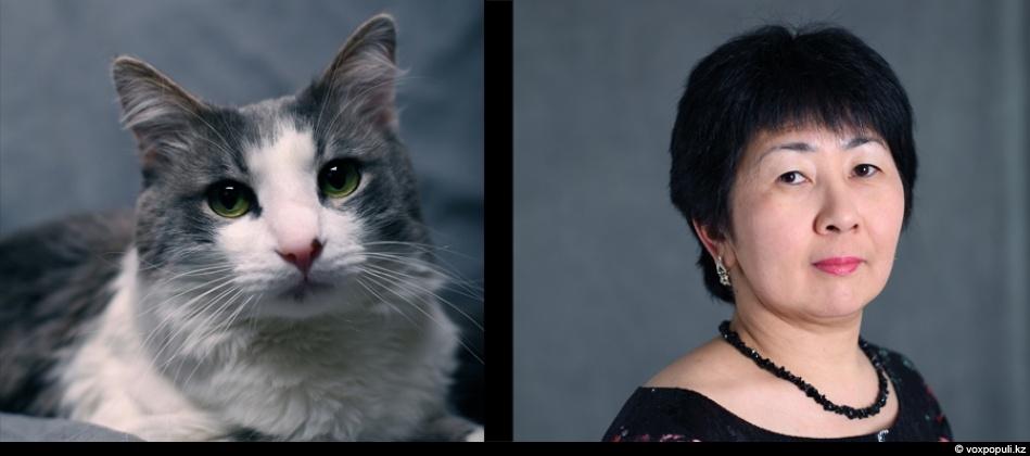 doggycat04 Собаки vs кошки