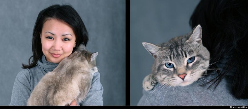 doggycat05 Собаки vs кошки