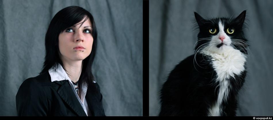 doggycat08 Собаки vs кошки