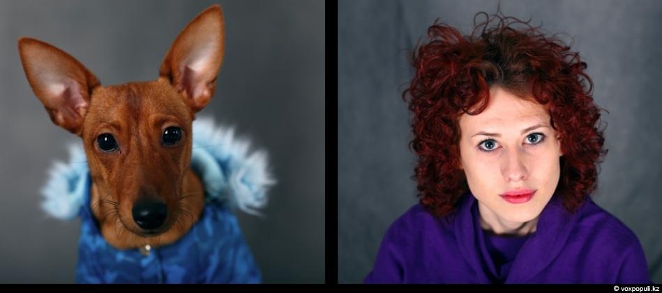 doggycat09 Собаки vs кошки