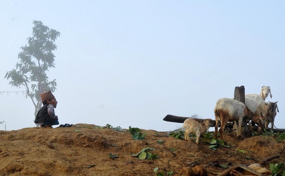 enhancee Самый маленький человек найден в непальской деревне
