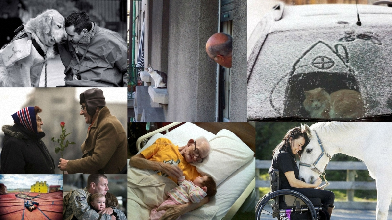 foto Фотографии, на которые невозможно смотреть равнодушно