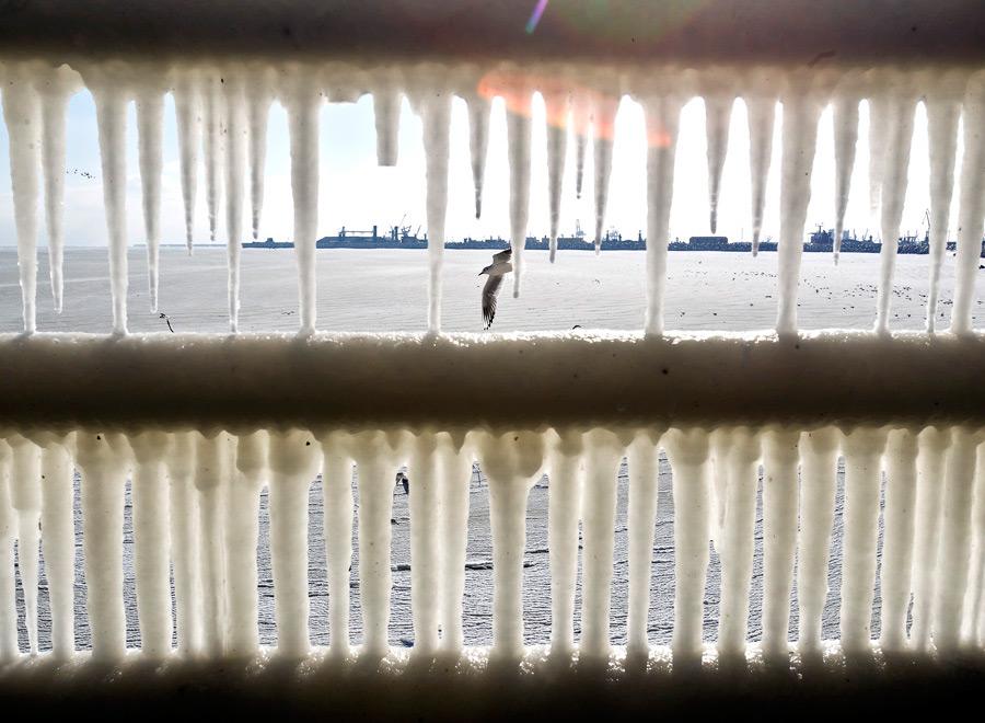freeze10 Черное море впервые за 30 лет покрылось льдом