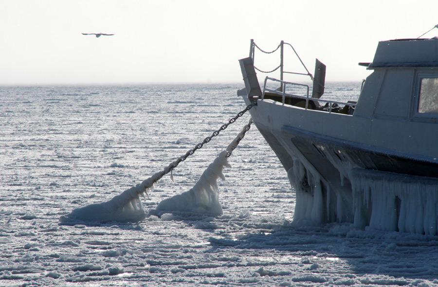 freeze14 Черное море впервые за 30 лет покрылось льдом