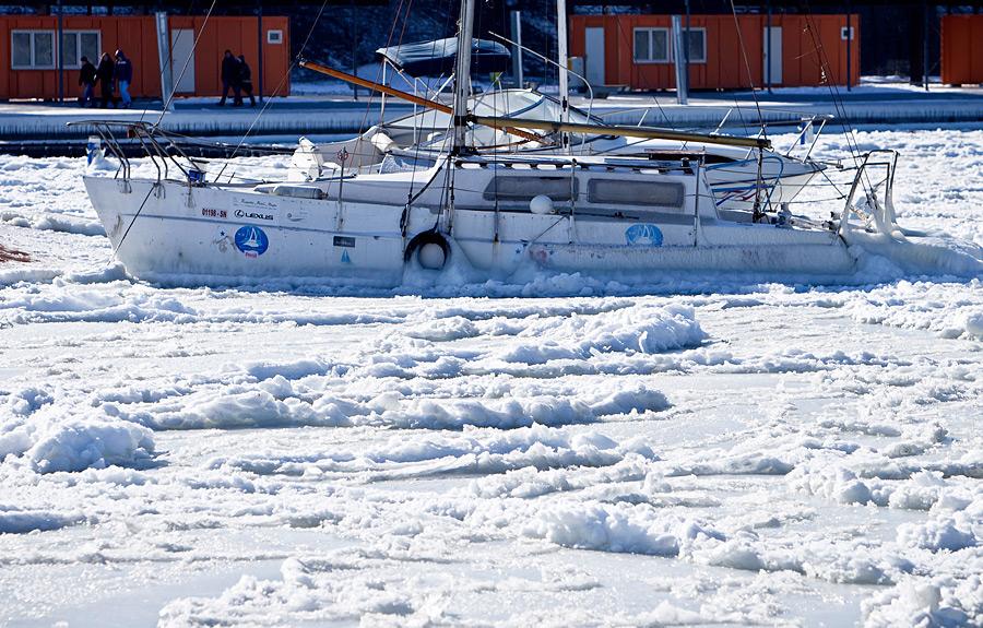 freeze20 Черное море впервые за 30 лет покрылось льдом