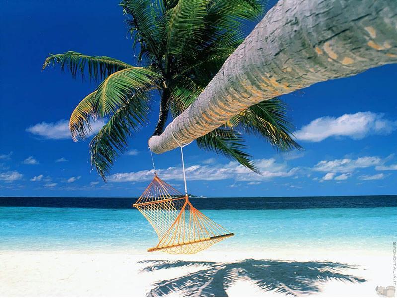 hammock01 25 мест идеальных для того, чтобы полежать в гамаке