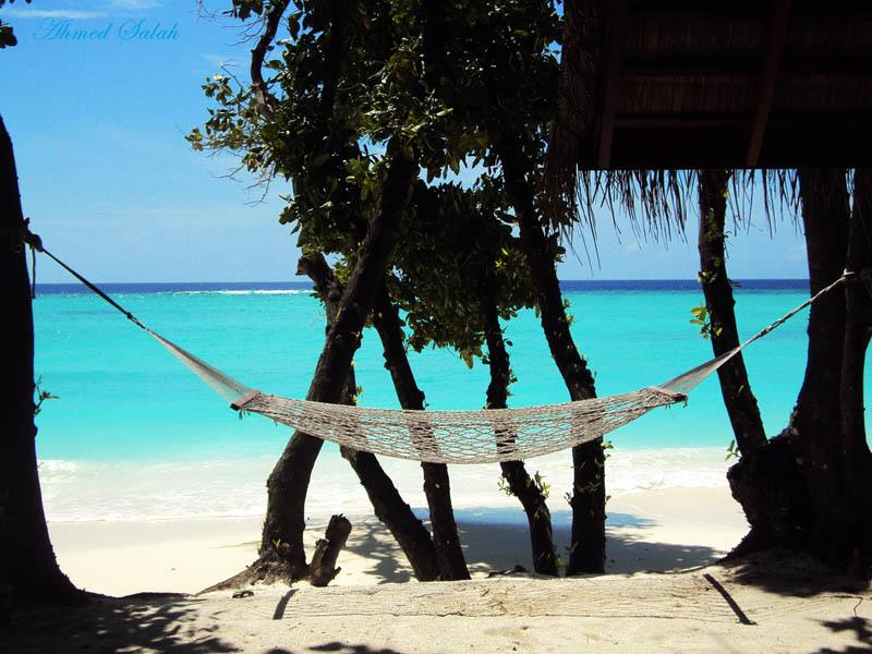 hammock17 25 мест идеальных для того, чтобы полежать в гамаке