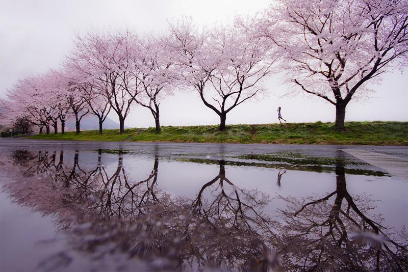 009 Весна идет...