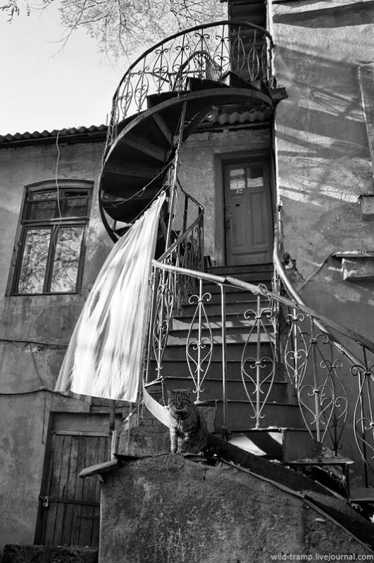 0136 531x800 Прогулки по Одессе: парадные, не парадные и другое...