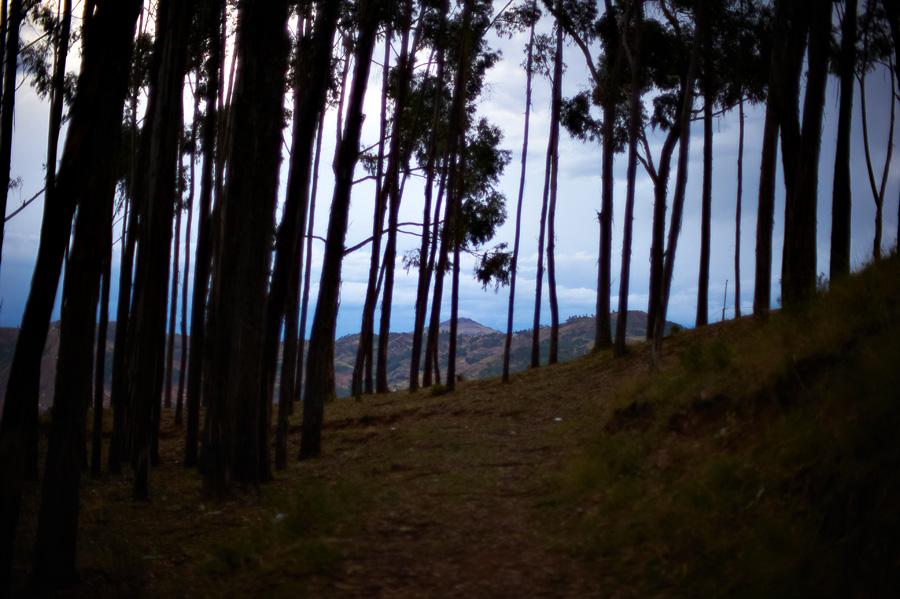 059 Путешествуя по Перу: из Куско к Мачу Пикчу