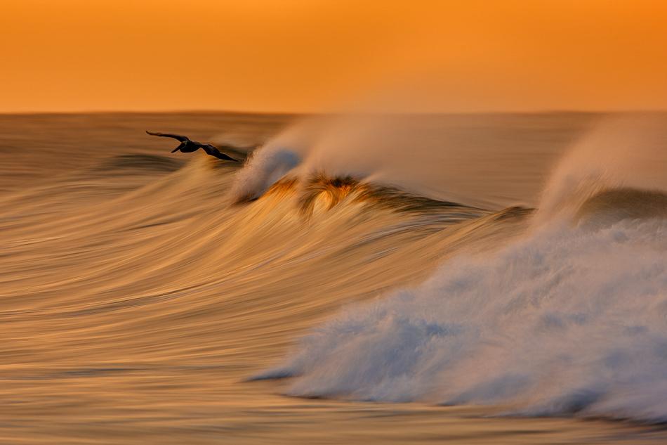 0 7fa24  Золотые волны Калифорнии