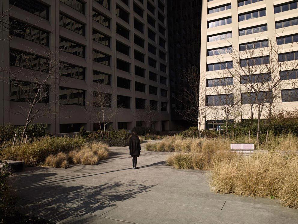 0 81b9d  Конец мира на снимках серии Silent World