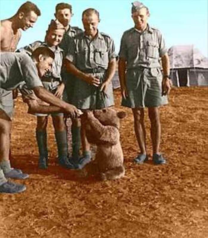 1204 Необычные солдаты Второй мировой: Войтек