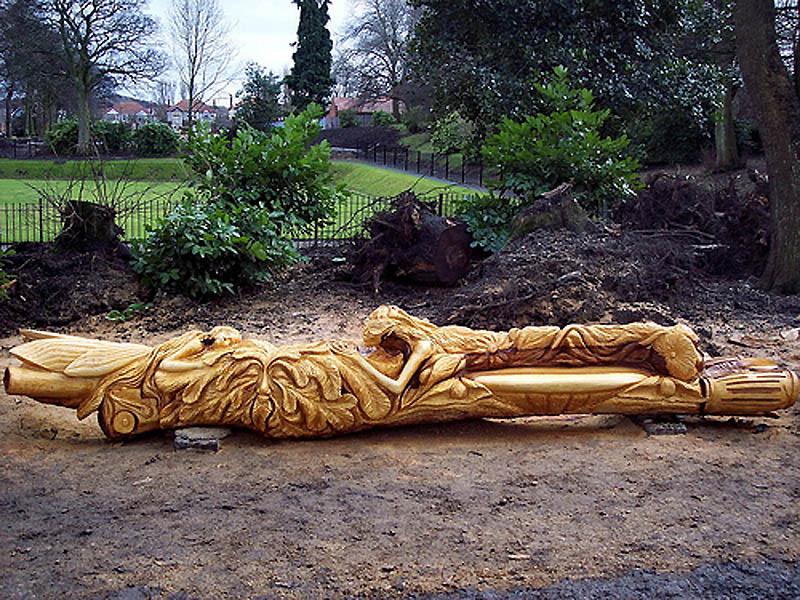 1315 Вторая жизнь срубленных деревьев
