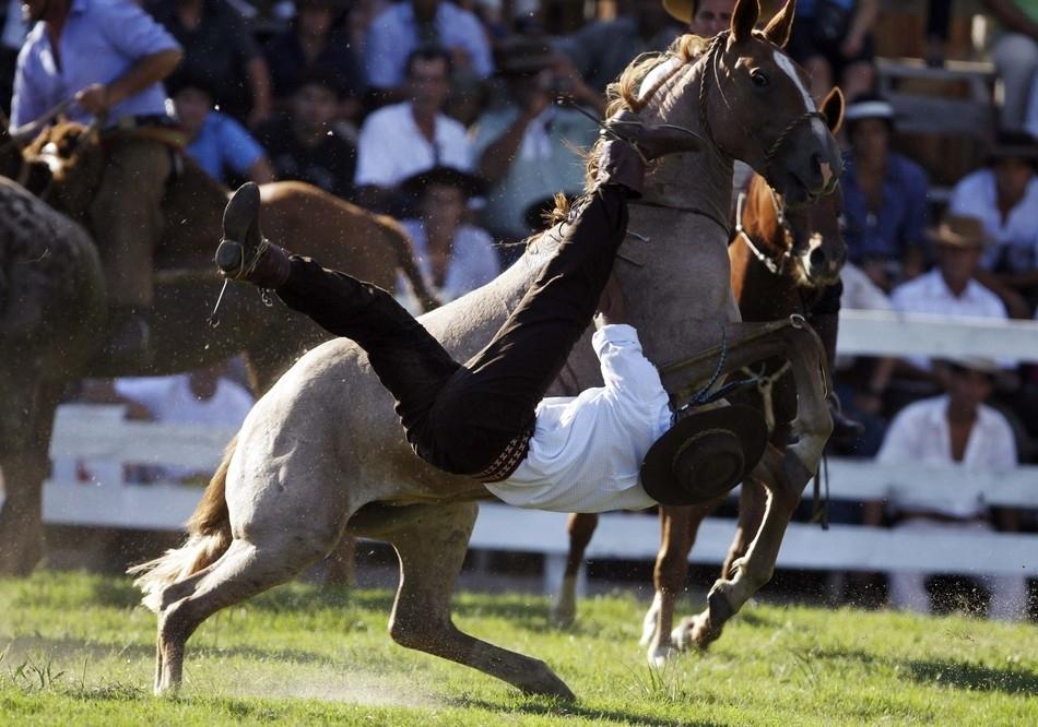 1548 Укрощение необъезженных лошадей: 20 удивительных кадров
