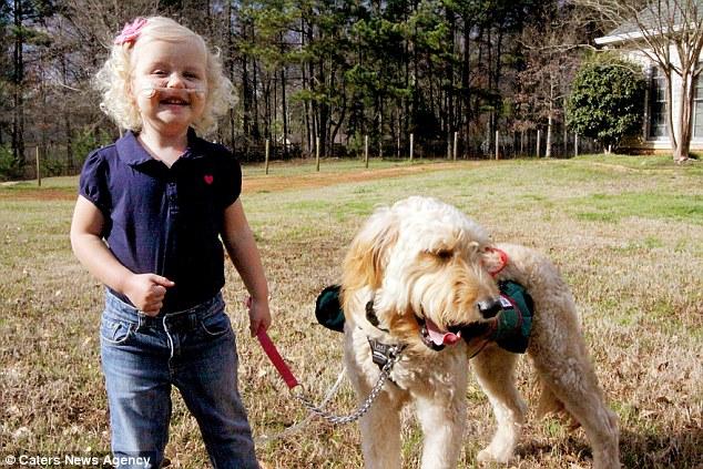 1695 Собака   спасательный круг для 3 летней Алиды