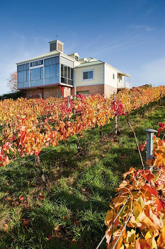 1717 35 самых красивых виноградников мира