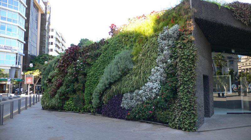 1724 15 вертикальных садов по всему миру