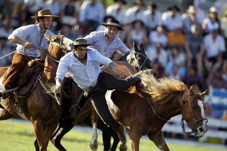 1740 Укрощение необъезженных лошадей: 20 удивительных кадров