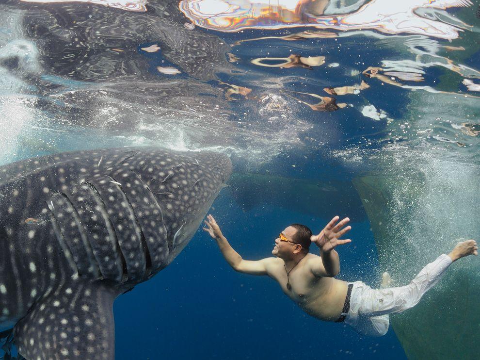 http://bigpicture.ru/wp-content/uploads/2012/03/2.jpg