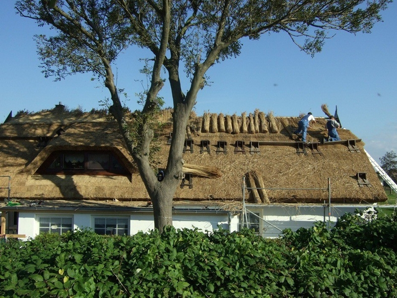 250 Соломенные крыши английской провинции
