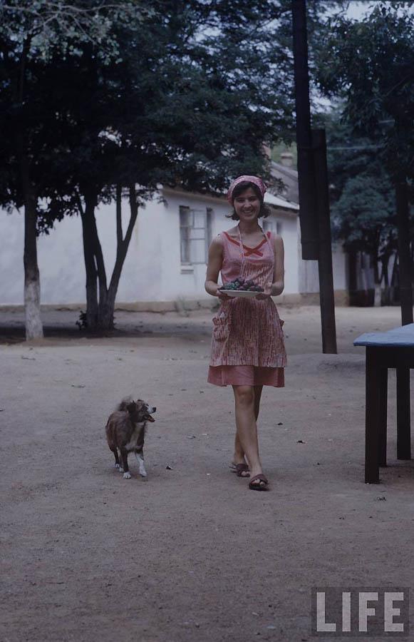 2520 Советская молодежь 60 х глазами американского фотографа