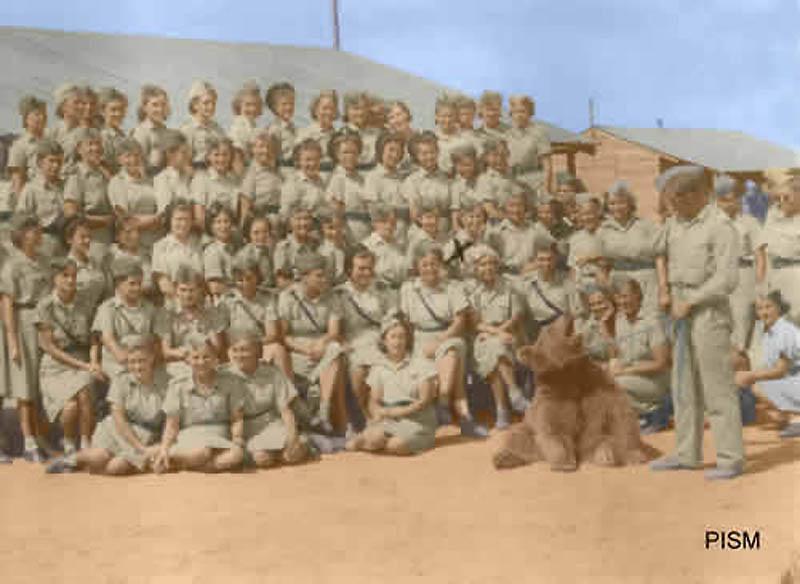 3117 Необычные солдаты Второй мировой: Войтек