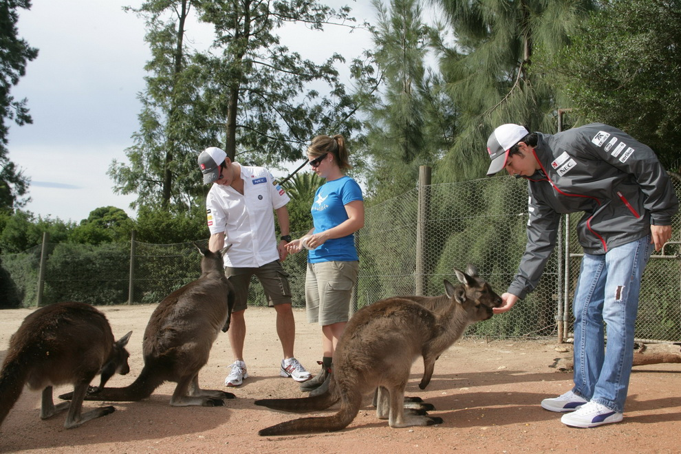 3163 За кулисами Гран При Австралии 2012: фоторепортаж