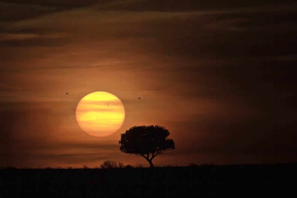 3176 Лучшие фото на космическую тематику   март 2012