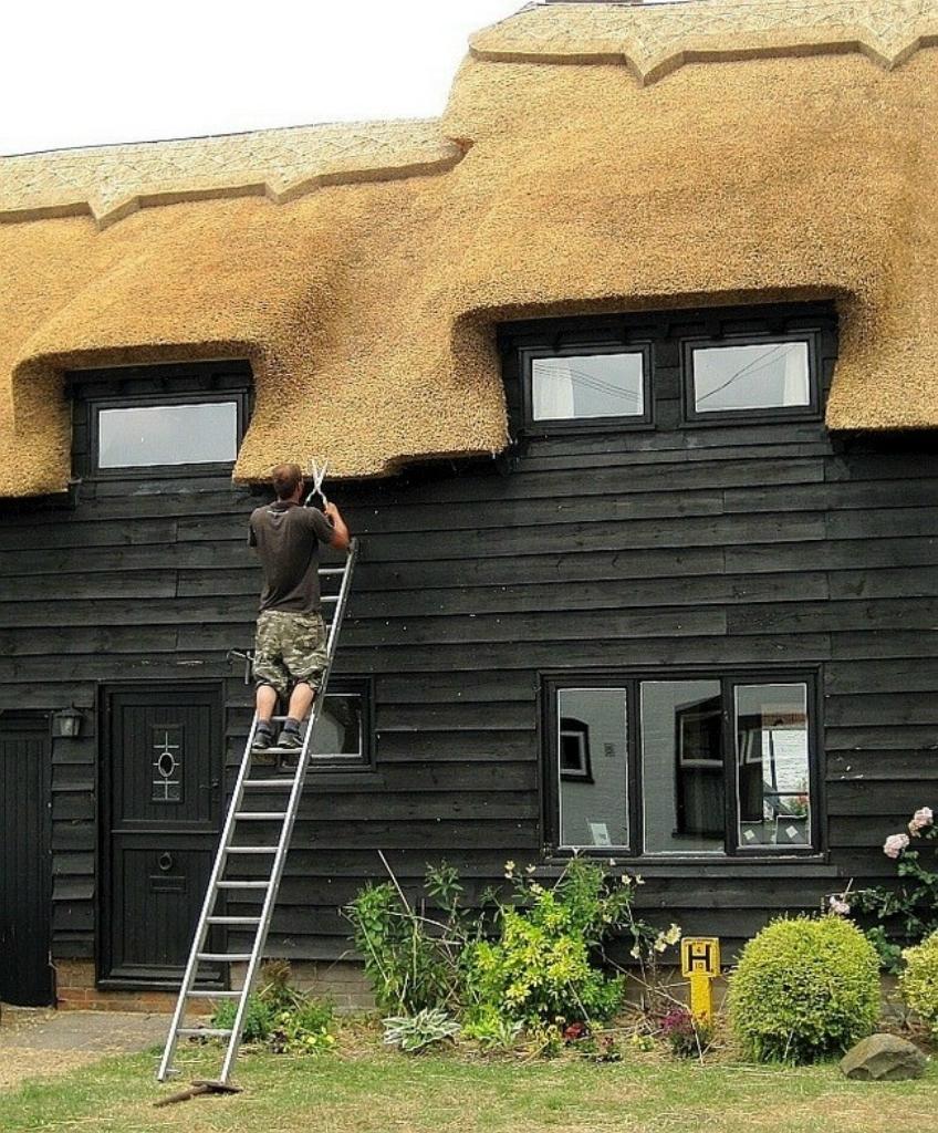329 Соломенные крыши английской провинции