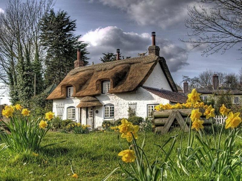 354 Соломенные крыши английской провинции