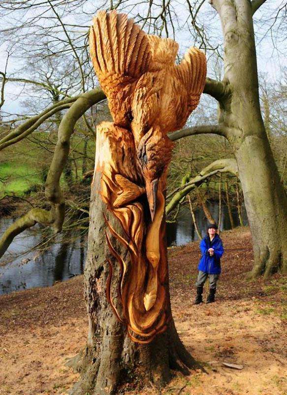 422 Вторая жизнь срубленных деревьев