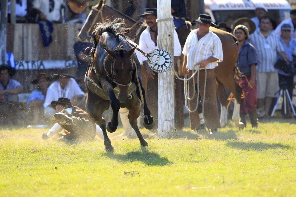 484 Укрощение необъезженных лошадей: 20 удивительных кадров