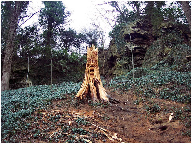 519 Вторая жизнь срубленных деревьев