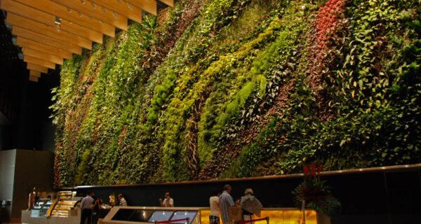 15 вертикальных садов по всемумиру