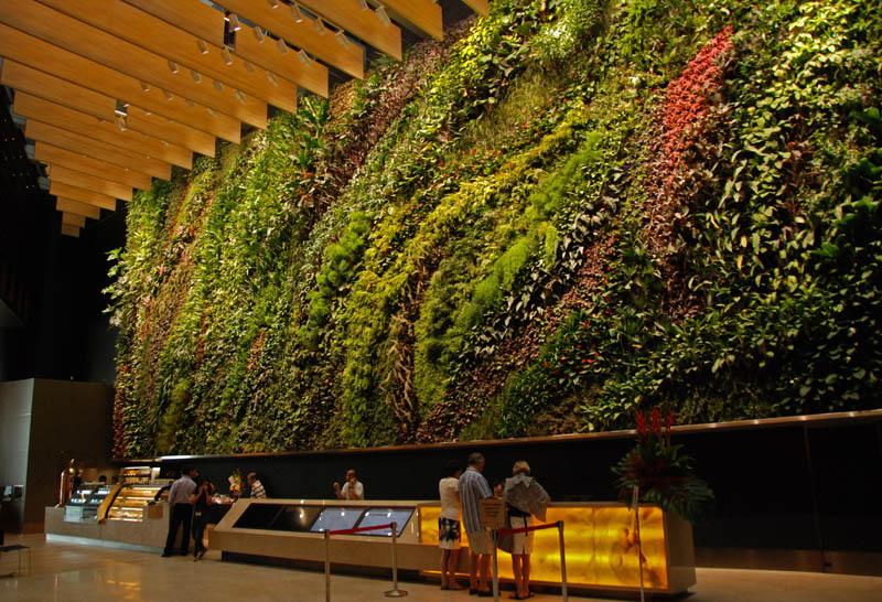 541 15 вертикальных садов по всему миру
