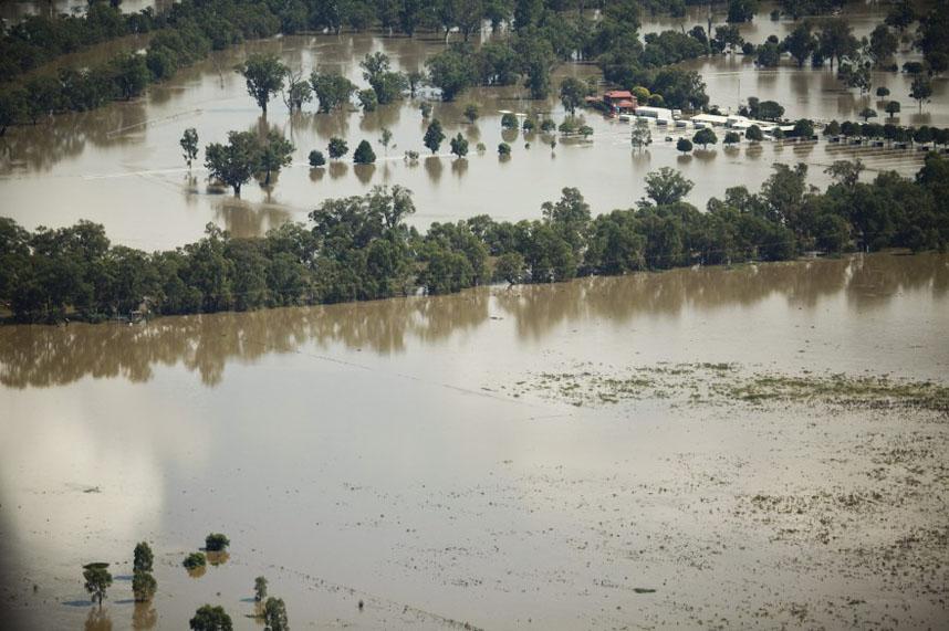5e3b8127e378e762d5f4da93aafa2679 Нашествие пауков после наводнения в Австралии
