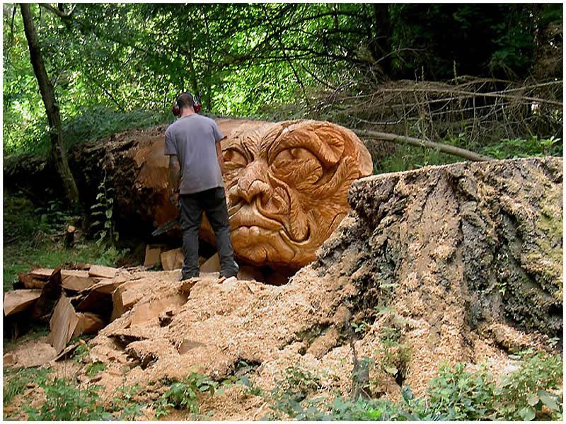 719 Вторая жизнь срубленных деревьев