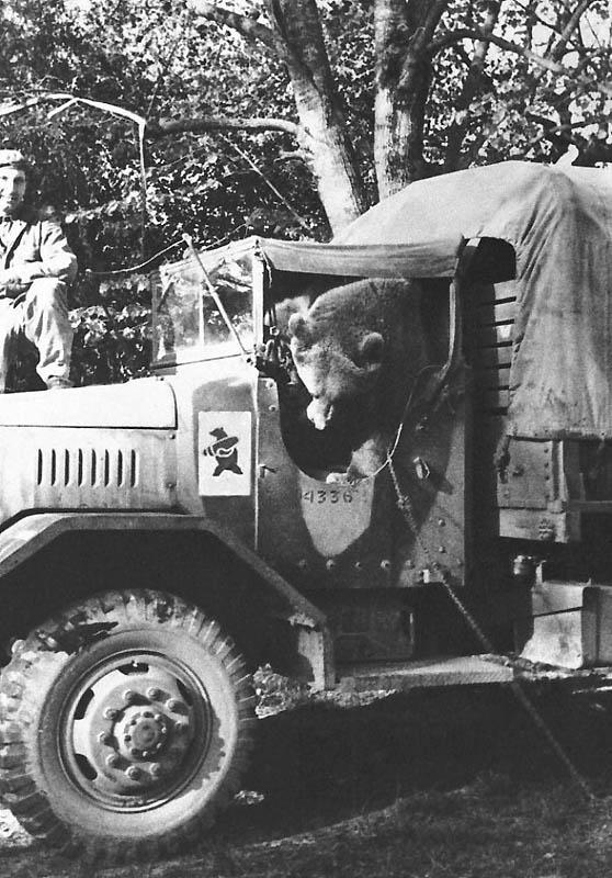 775 Необычные солдаты Второй мировой: Войтек