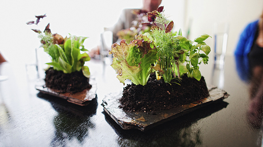 6 креативных салатов, которые радуют взгляд