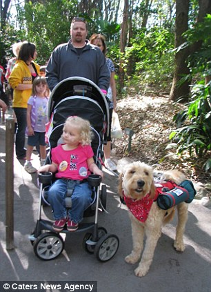 8158 Собака   спасательный круг для 3 летней Алиды